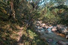 Ландшафт реки с большими камнями стоковые изображения rf