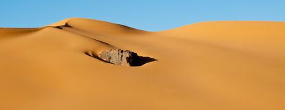 ландшафт Сахара пустыни Алжира Стоковые Фото