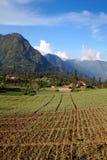 Ландшафт села Tengger стоковое фото