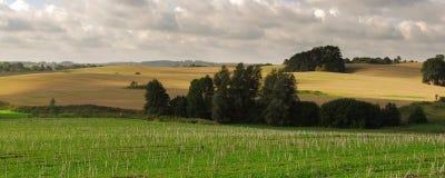 ландшафт сельский Стоковое Фото
