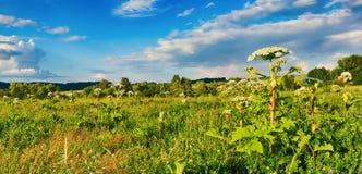 ландшафт сельский Heraclium на переднем плане панорама Стоковое Изображение RF