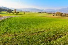 Ландшафт сельской местности в Словении, кровоточенном районе стоковые фотографии rf