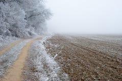 ландшафт сельской местности морозный Стоковое Изображение