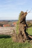ландшафт сельской местности осени с deadfallen деревья и голубое небо Стоковая Фотография