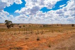 Ландшафт сельской местности сельского paddock Сцена земледелия стоковая фотография