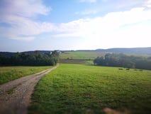 Ландшафт сельской местности Художнический взгляд в цветах стоковое изображение