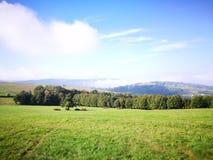 Ландшафт сельской местности Художнический взгляд в цветах стоковое фото rf