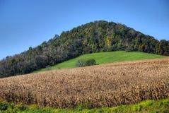 ландшафт сельской местности Стоковое фото RF