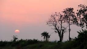 Ландшафт силуэта с солнцем около к заходу солнца видеоматериал