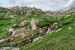 Ландшафт скалистой горы в Колорадо, США стоковое фото