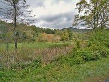 Ландшафт следа Creeper Вирджинии стоковое фото rf