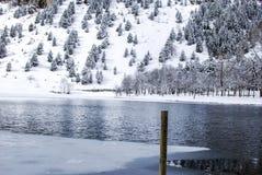 Ландшафт снега в зиме Стоковые Изображения