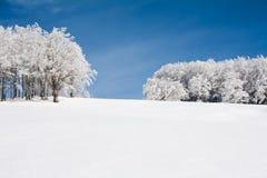 Ландшафт снежка Стоковая Фотография