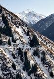 Ландшафт снежных гор стоковые изображения rf