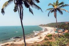 Ландшафт солнечного пляжа под пальмами Стоковое Изображение