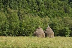 Ландшафт со стогами сена и зеленой травой стоковая фотография