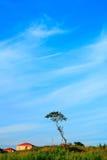 ландшафт спокойный Стоковая Фотография