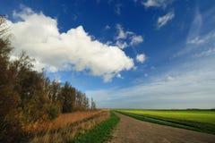 ландшафт страны голландский marken типичная Стоковые Изображения