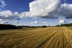 Ландшафт страны стоковое изображение rf