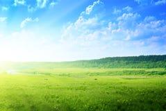 ландшафт страны Стоковые Изображения RF