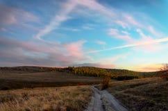 Ландшафт с большим пшеничным полем стоковая фотография rf