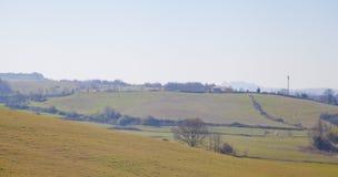 Ландшафт с деревом Стоковое Изображение