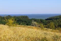 Ландшафт с деревьями, лугом, холмами и рекой Стоковое Изображение RF