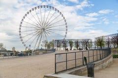 Ландшафт с колесом Ferris и пустые стулья приближают к пруду в саде Тюильри в Париже стоковое изображение rf