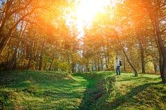 Ландшафт с лесом осени на зеленых холмах злаковика Взгляд на hiker человека от afar стоковые изображения rf