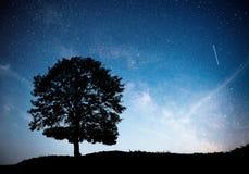 Ландшафт с небом ночи звёздным и силуэтом дерева на холме Млечный путь с сиротливым деревом, падающими звездами Стоковые Изображения