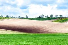 Ландшафт с полями другого цвета волнистыми текстурированными сельскими Стоковые Фотографии RF