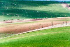 Ландшафт с полями другого цвета волнистыми текстурированными сельскими Стоковые Изображения