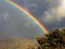 Ландшафт с частью 2 радуг стоковое изображение rf