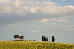 ландшафт Тоскана Стоковое Изображение