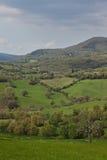 ландшафт Тоскана стоковые изображения rf