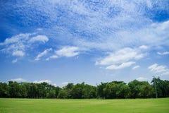 Ландшафт травы и красивого неба Польза как естественная предпосылка стоковые изображения