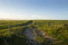 Ландшафт травянистого поля при дорога гравия водя в горизонт стоковые фото