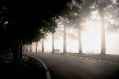 ландшафт тумана стоковые изображения rf