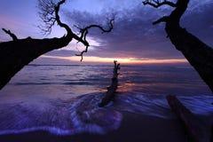 Ландшафт утра Стоковое фото RF