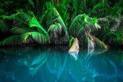 Ландшафт фантазии тропического озера стоковая фотография rf