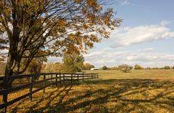 Ландшафт фермы осени Стоковая Фотография RF