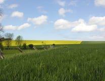 ландшафт Франции Стоковое Фото