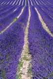 Ландшафт француза - Drome Стоковые Фотографии RF