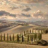 Ландшафт холмов, проселочная дорога, кипарисы - год сбора винограда стоковое изображение rf