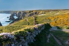Ландшафт шагов Bedruthan в Corwal Великобритании стоковое изображение rf