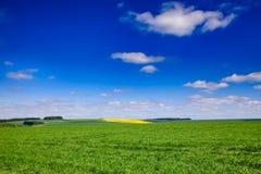 Ландшафт южная Англия Великобритания лета сельский Стоковое фото RF