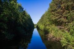 Ландшафт, яркий день Деревья, вода, яркое небо стоковые изображения rf