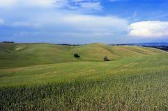 ландшафт 5 Стоковая Фотография RF