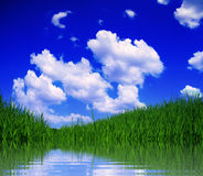 ландшафт Стоковые Фото
