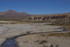 Ландшафт altiplano в национальном парке Lauca стоковые изображения rf
